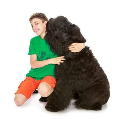 best hypoallergenic dogs for kids